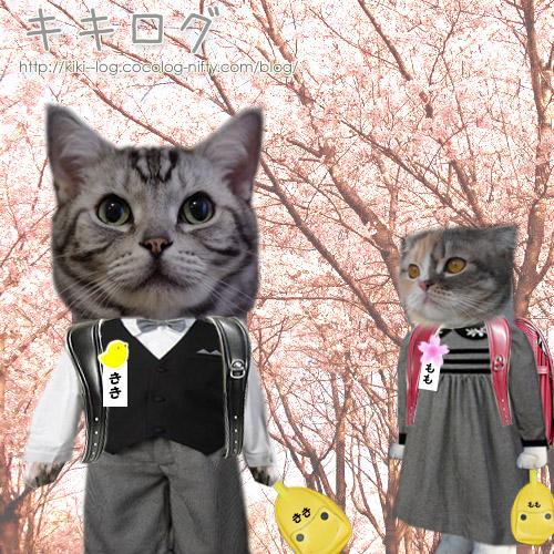 キキとモモちゃんの入学式